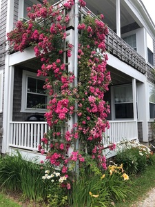 8 Woodland Drive, Nantucket, MA
