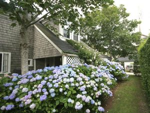 2 Magnolia Avenue, Nantucket, MA