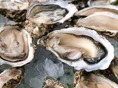 Oysters & Champagne Farm Tour